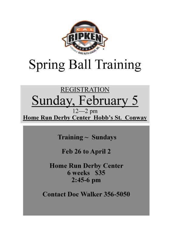 2017-spring-training